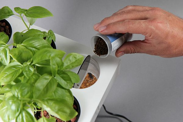 Home Aquaponics Kit_07