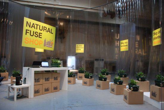 Natural Fuse shop