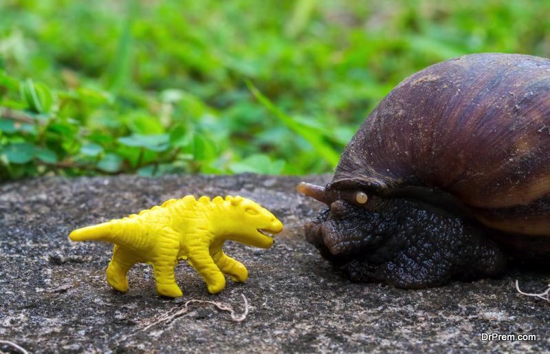 Dinosaur-Garden-Ideas