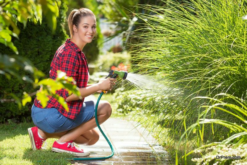 create-a-low-maintenance-garden