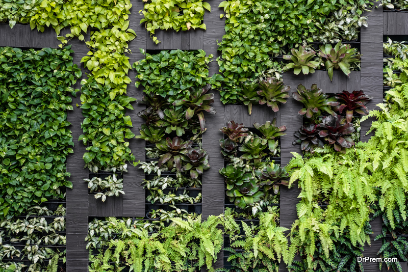 Latest Trends in Plant Walls